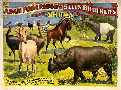 Vintage-Circus-Posters-Adam-Forepaugh-and-Sells-Brothers-enormous-shows-combined-2