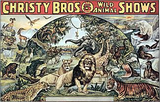 Vintage-Circus-Posters-Christy-Bros.-Big-5-Ring-Wild-Animal-Shows