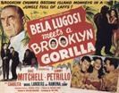 BELA LUGOSI MEETS A BROOKLYN GORILLA movie poster