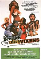 BENEATH THE VALLEY OF THE ULTRAVIXENS movie-poster