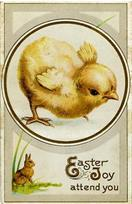 Easter Images 0235