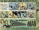 THE-INCREDIBLE-SHRINKING-MAN-3-movie-poster