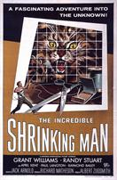 THE-INCREDIBLE-SHRINKING-MAN-movie-poster
