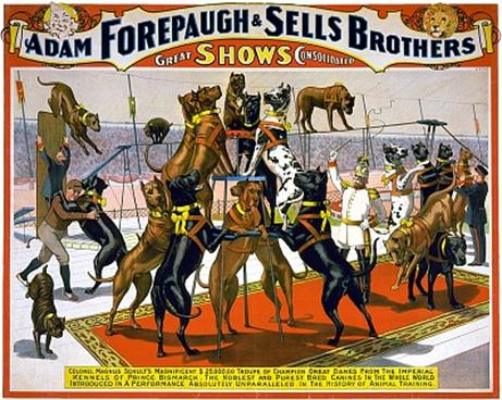 Vintage-Circus-Posters-Adam-Forepaugh-and-Sells-Brothers-great-shows-consolidated