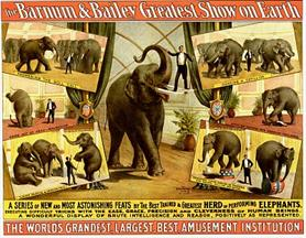 Vintage-Circus-Posters-Barnum-and-Bailey-Intelligent-Herd-of-Elephants