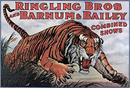 Vintage-Circus-Posters-Ringling-Bros-Barnum-Bailey-Tiger-In-The-Bush