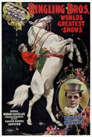 Vintage-Circus-Posters-Ringling-Bros.-World's-Greatest-Daring-Madam-Castello
