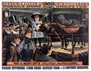 Vintage-Circus-Posters-Sells-Brothers---S.H.-Barrett---Midget-Cattle-5-Continent-Me