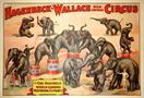 Vintage-Circus-Posters-hagenbeck-wallace