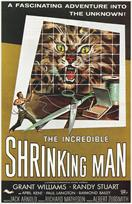 incredible shrinking man 1957