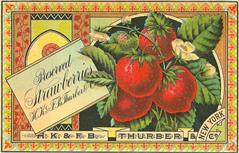 vintage-posters-signs-labels-adverts-0130